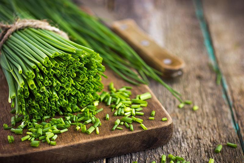 ricette con erba cipollina